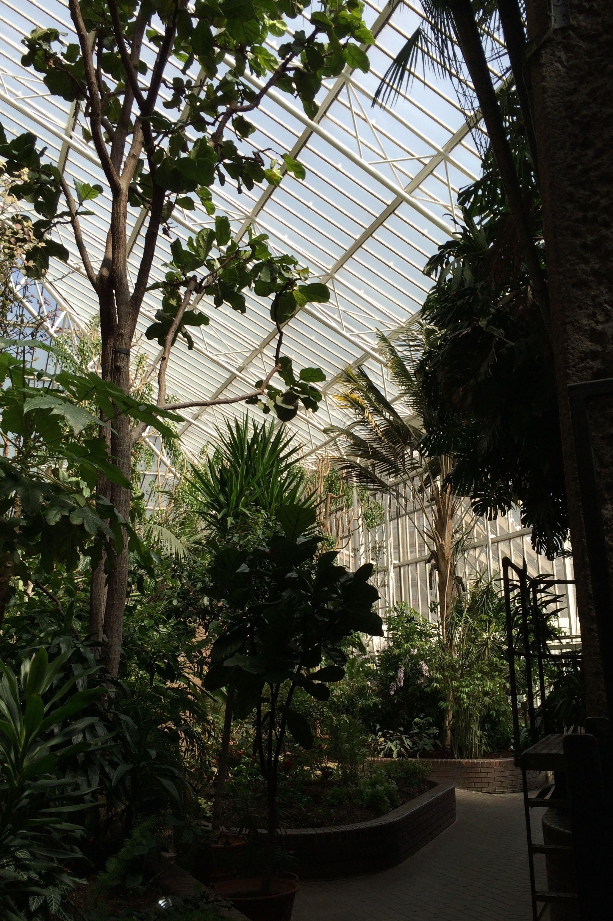 London photos scifi greenhouse  FlickFilosophercom