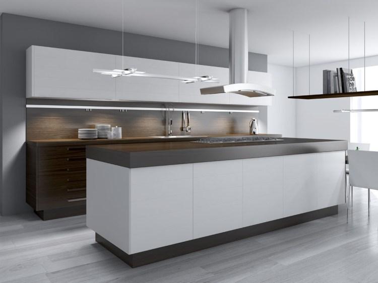 Küchen-Modernisierung und Installation