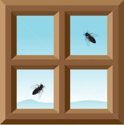 flies-attracted-to-twilight