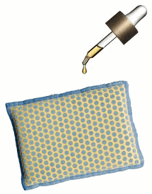 Saturate Dish Sponge with Lavender Oil