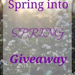 Feminism & Video Games: The Wii U Spring Into Spring Giveaway!