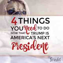 4 Things You Need To Do Now That Trump Is America's Next President