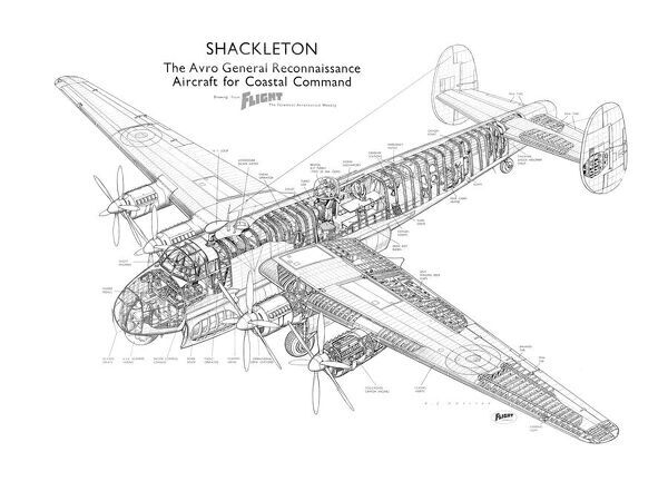 Avro Shackleton Mk1 Cutaway Drawing photo prints and wall