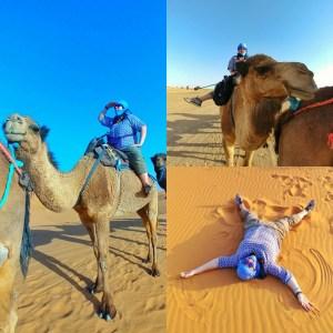 desert camel ride morocco