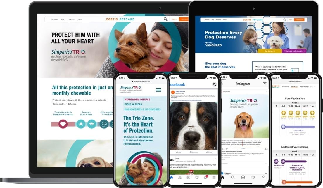 zoetis app offers