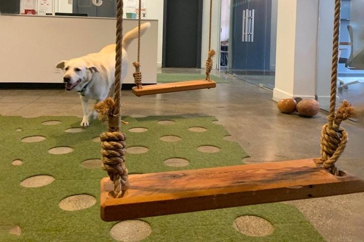 office swings