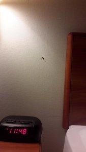 Hotel Nightmares FA 3