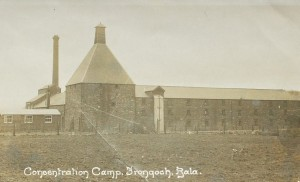 frongoch camp