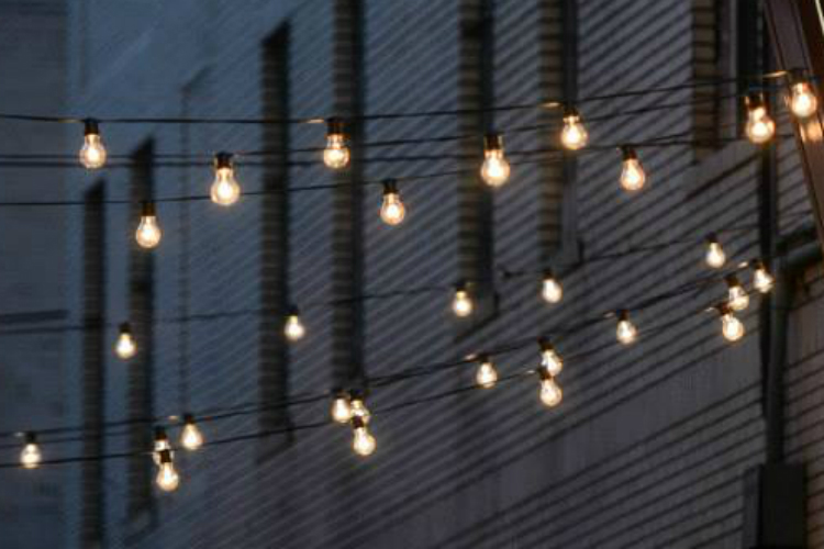 dinner under the lights