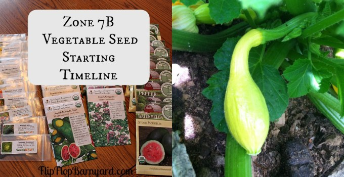 Garden seed starting guide for zone 7B.