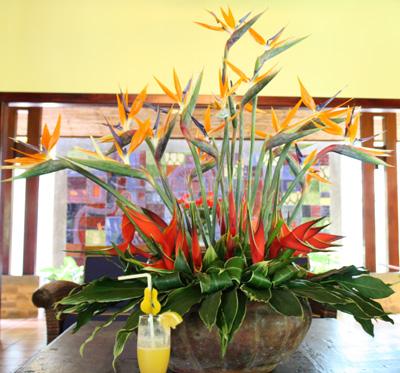 Costa Rican Flower Arrangements  Flirty Fleurs The Florist Blog  Inspiration for Floral Designers