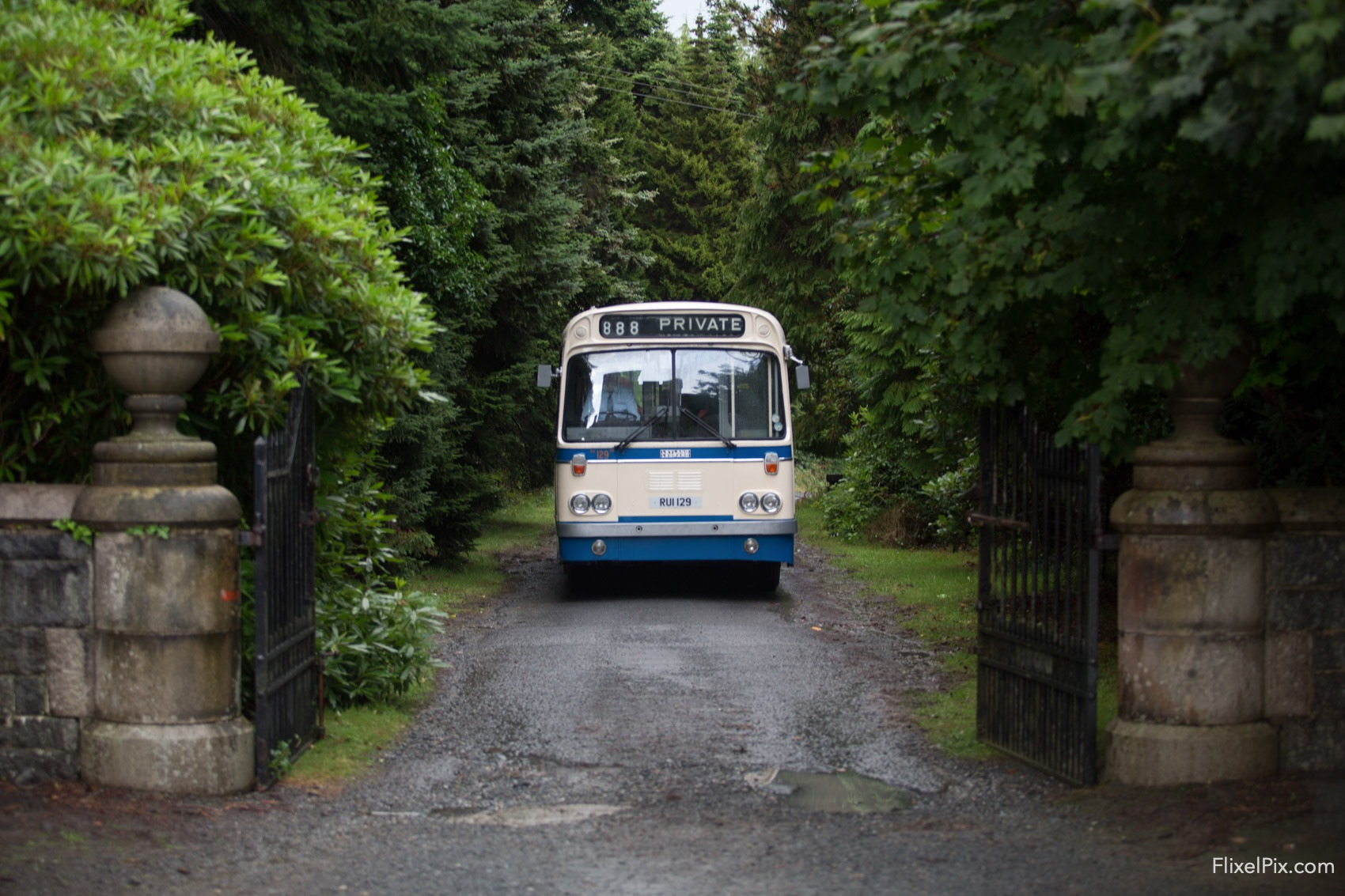 ulster bus