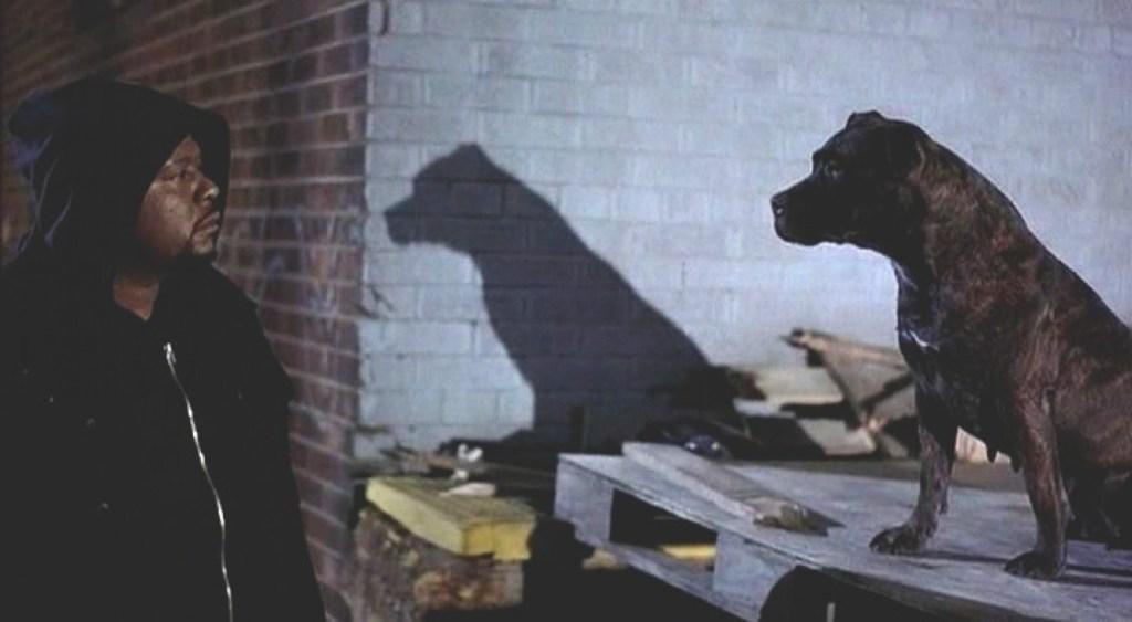 Criterion October Ghost Dog