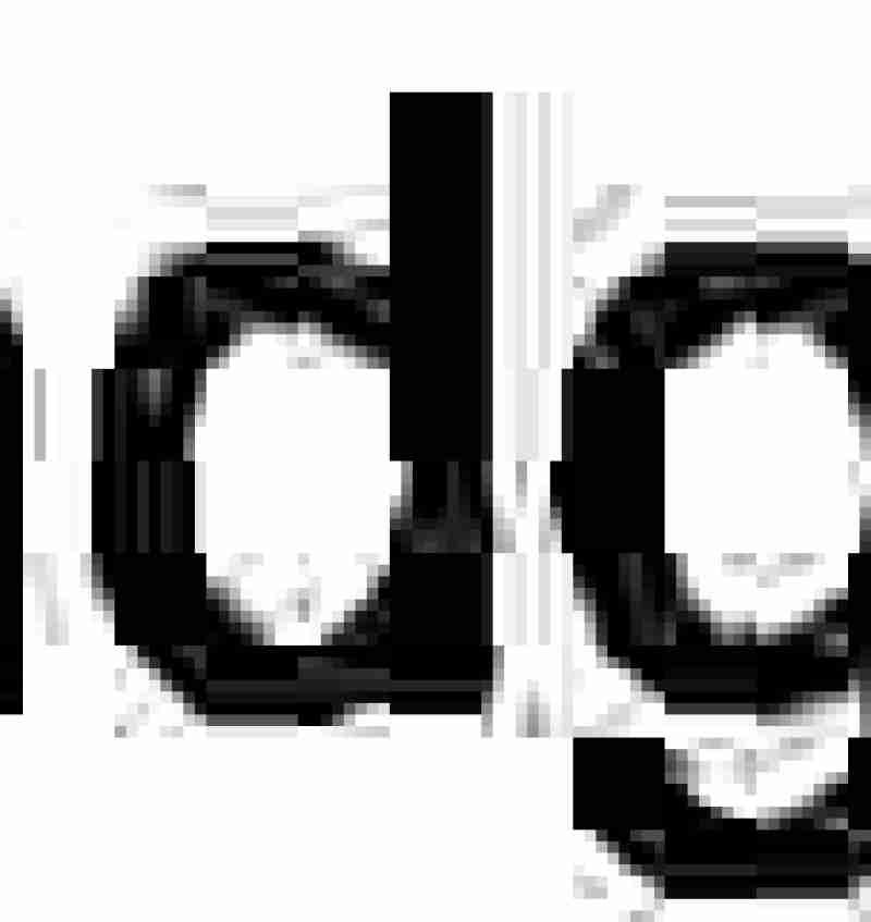 No gluten? No dairy? No worries. This Gluten Free Dairy Free Green Bean Casserole has got you covered.