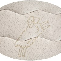 FloBeds Natural Talalay Mattress surrounded by Organic Cotton quilted to woll