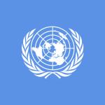UN ONU Flag Bandera
