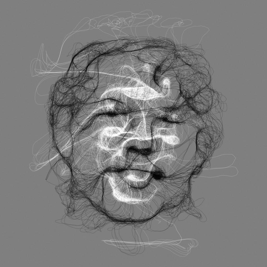 floccular portraits interactive art