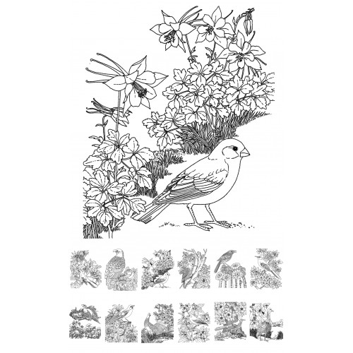 Adult Coloring Book # Birds and Flowers