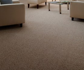 Modern Twist Carpet