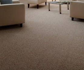 Modern Twist Carpet