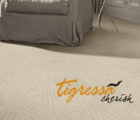 Tigressa Soft Style Carpet Reviews  Floor Matttroy