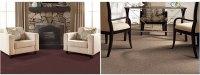 Shop Tigress Cherish Carpet Fade-Resistant Floors ...
