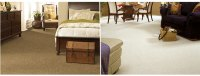 Shop Tigress SoftStyle: Durable & Soft Carpeting ...
