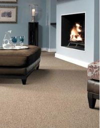 Tigressa Carpet | Flooring America