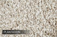 Phenix Carpet Specifications | Review Home Co