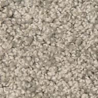 Mohawk Ideal Match Carpet - Stain, Soil, Pet Urine Resistant
