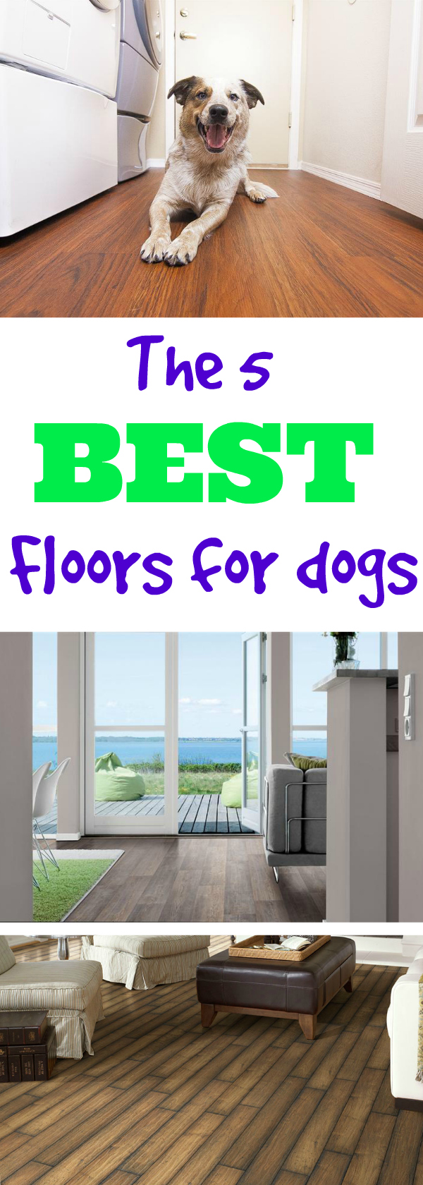 Amazing Whatu0027s The Best Flooring For Dogs? Weu0027ve Gathered The Top 5 Dog Friendly