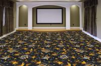 The Best Home Theater Carpet for Looks & Sound