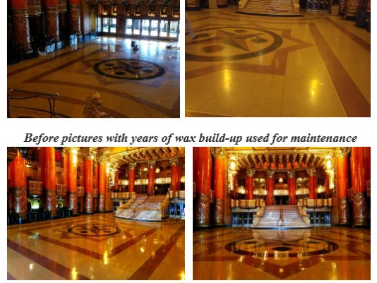 Cheetah Pad, Eco Friendly Stone Polishing, EcoPads, EcoStone, earth day, eco stone, Eco-friendly, energy conservation, Environmentally friendly flooring