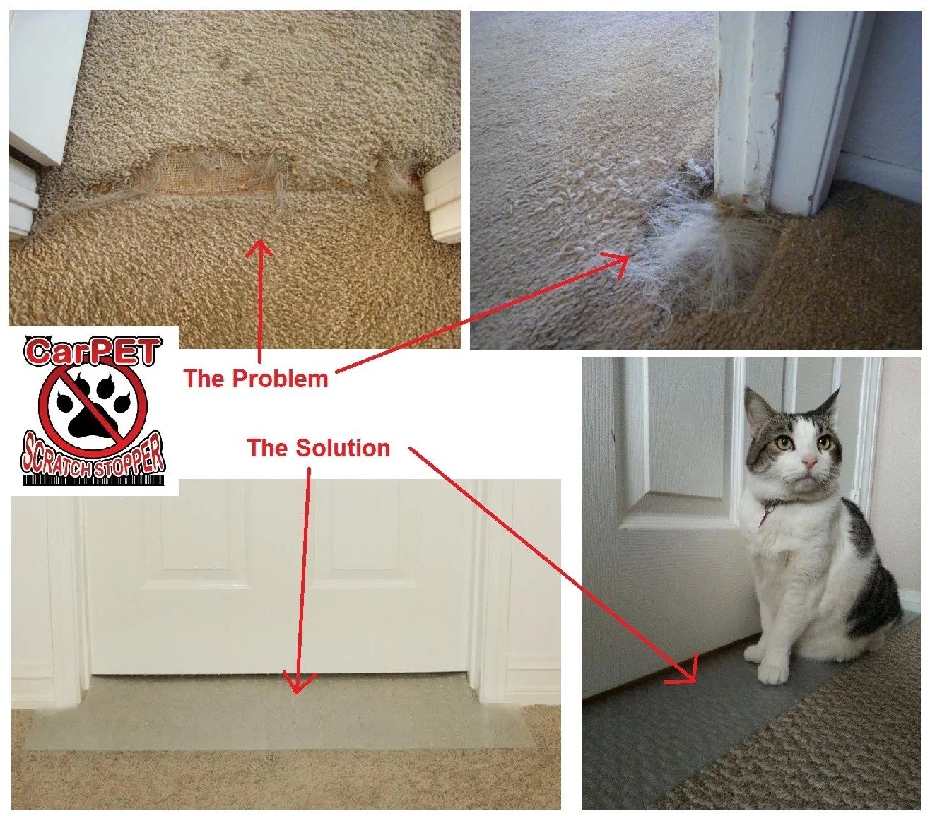 CarPET Scratch Stopper: Stop Cats from Scratching Carpet