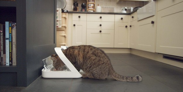 Cat Feeder SureFeed Microchip Pet Feeder by SureFlap Promotional Code FLOPPYCAT15