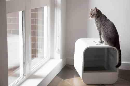 Grand PooBox Modern-Style Covered Litter Box Kickstarter Campaign 4