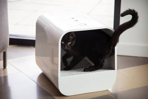 Grand PooBox Modern-Style Covered Litter Box Kickstarter Campaign 5