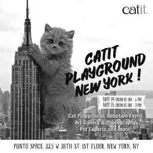 Catit Playground New York
