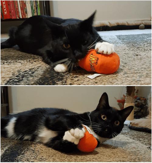 Yeowww Halloween Pumpkin Catnip Toy and Zip