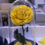 Flori criogenate