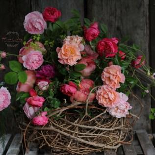 FloraLaVie_1232