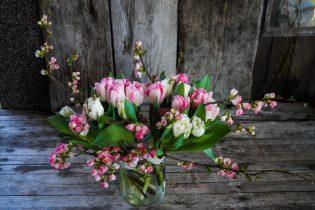 FloraLaVie-10-L