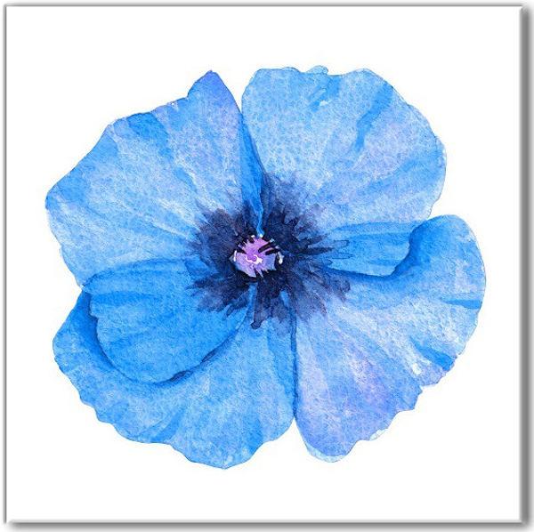 Bright blue poppy ceramic wall tile mightylinksfo