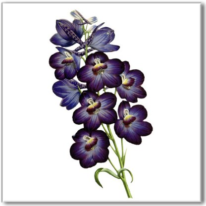 Vintage style floral wall tile, purple violet flowers on a white square background