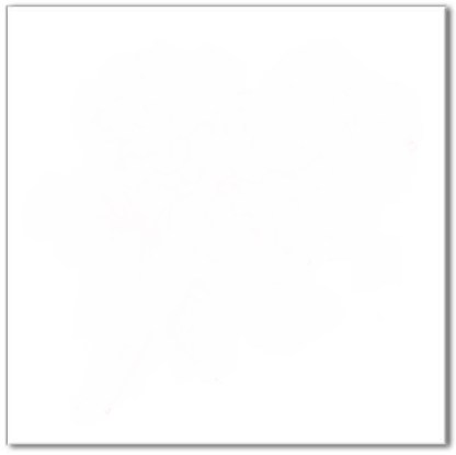 Plain white tile - a square ceramic wall tile with gloss finish