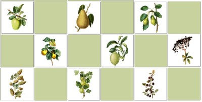 Green Tiles - Fruit Tiles Check Pattern Example
