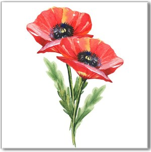 Flower Tiles - red poppy flowers ceramic wall tile