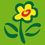 Grukarte Gute Besserung  Blumen online verschicken auf