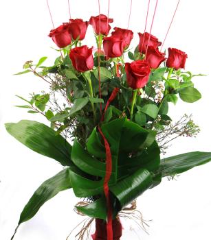Docena de Rosas Rojas Sant Jordi