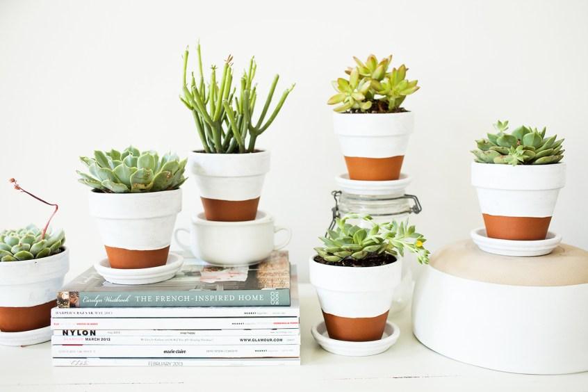 Macetas Con Materiales De Reciclaje 4 Ideas Florestore